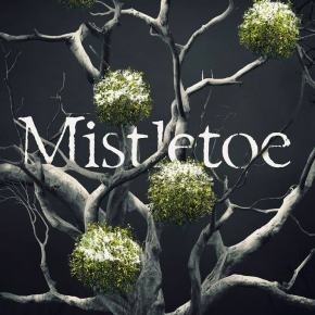Mistletoe (2019) #25DaysofCreepmas